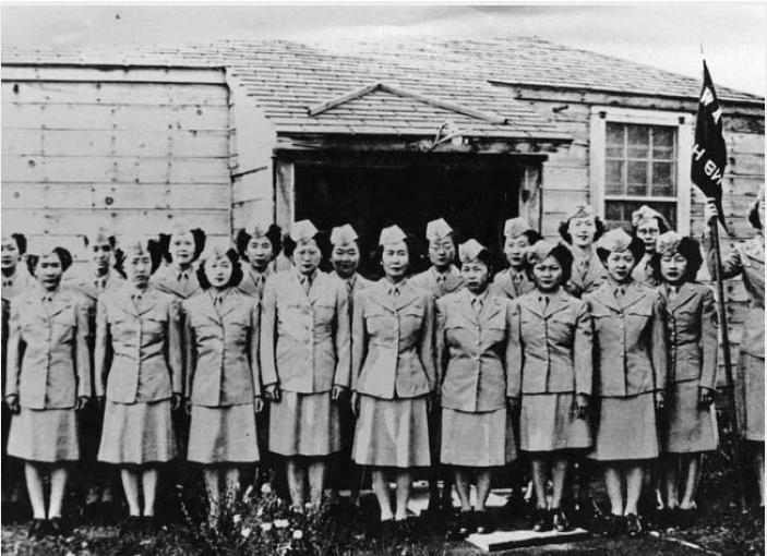 Japanese American Veterans Association - Nisei Legacy